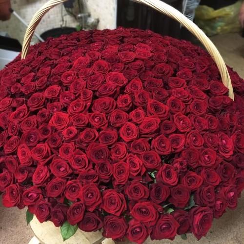 Купить на заказ 1001 роза с доставкой в Степняке