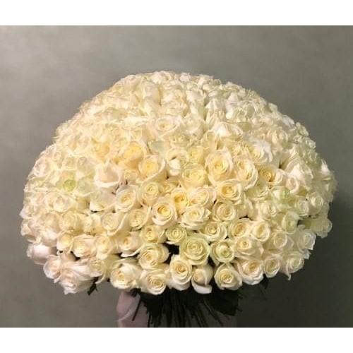 Купить на заказ 201 роза с доставкой в Степняке