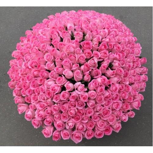 Купить на заказ 501  роза с доставкой в Степняке