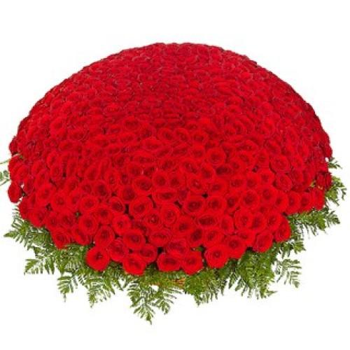 Купить на заказ 301  роза с доставкой в Степняке